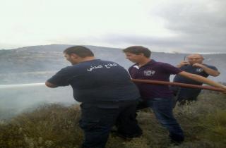 حريق في أحراج بينو التهم مساحات حرجية واسعة واشجار الزيتون والسنديان